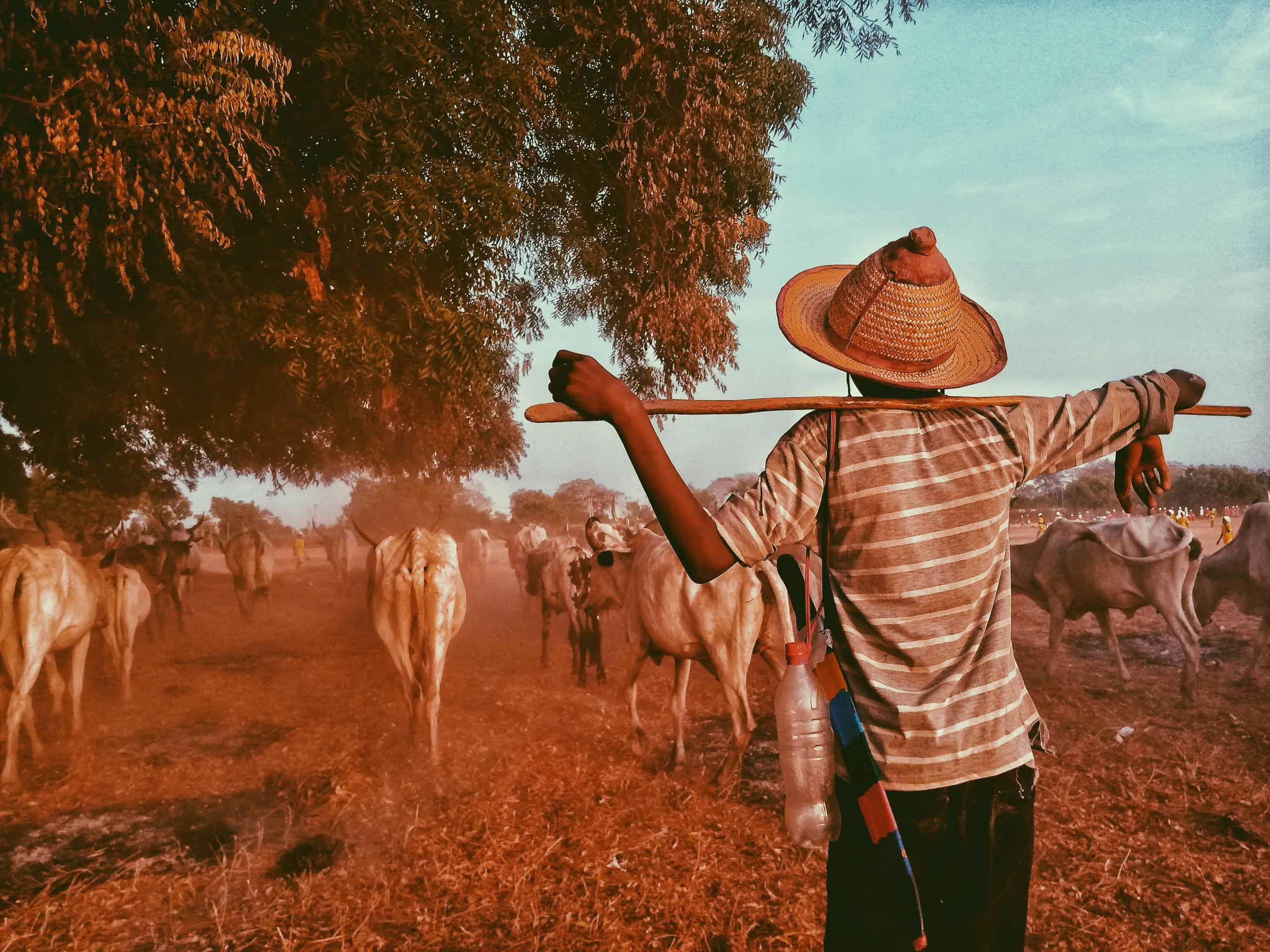 Mikrofinanzkredit für afrikanischen Farmer